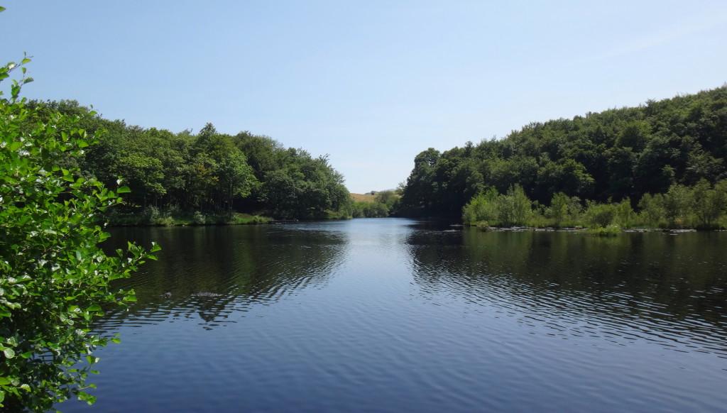 L'étang de Roussillou