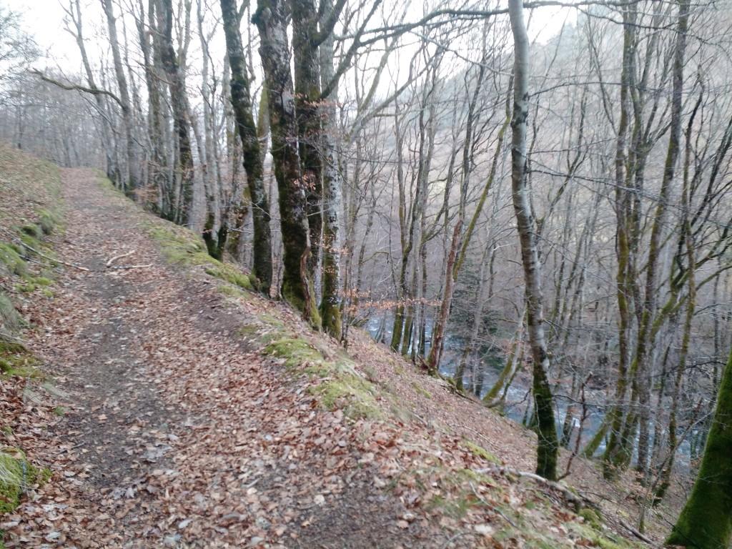 Trail de la Gentiane 2016